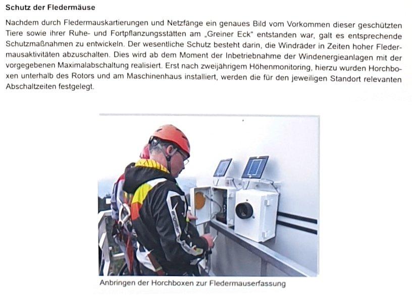 """Hinweistafel zu Fledermäusen am Windpark """"Greiner Eck"""""""