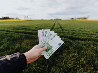 Hand hält Geldscheine vor einem Feld