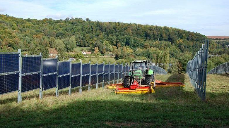 Landwirtschaft und Photovoltaik verbinden Lebensmittelproduktion und Ökostromherstellung